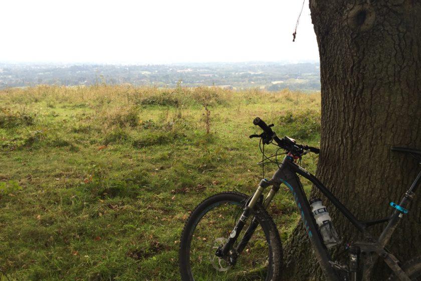 Reigate Hill view
