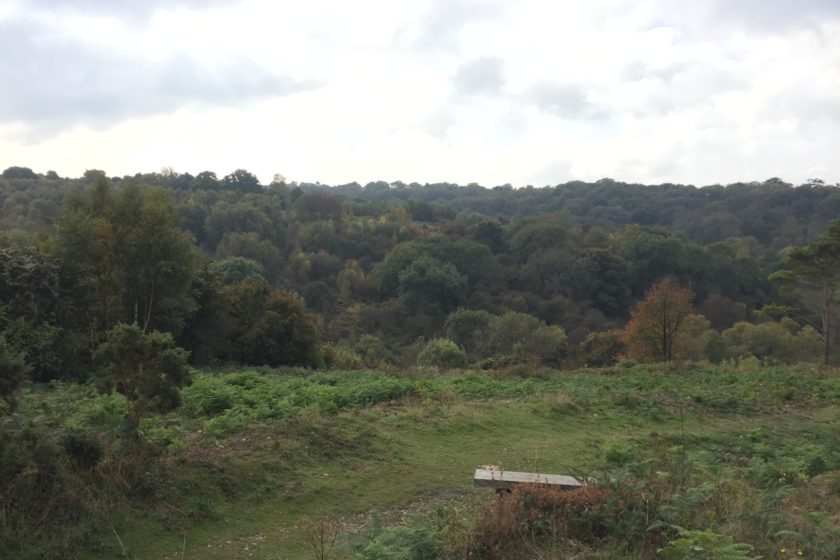 Headley Warren Nature Reserve