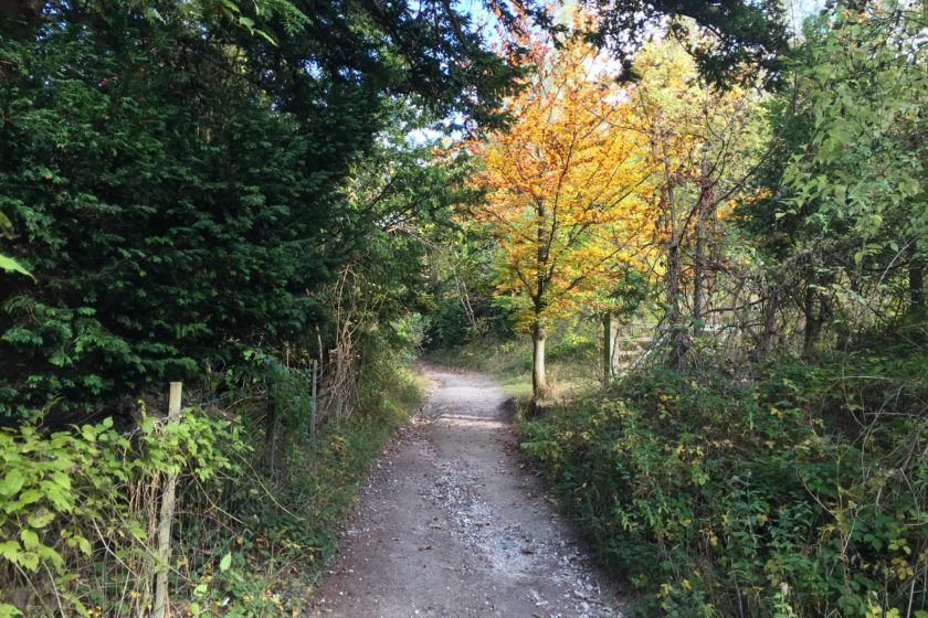 Boxhill route