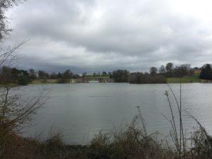 Lake by Blenheim Park