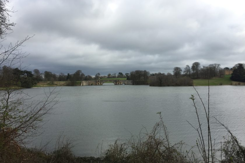 Lake by Blenheim Park