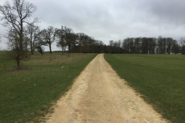 path towards charlbury