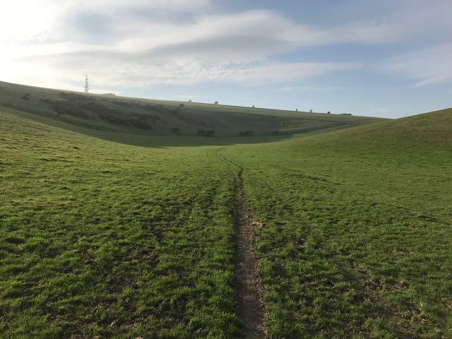 sussex farmland