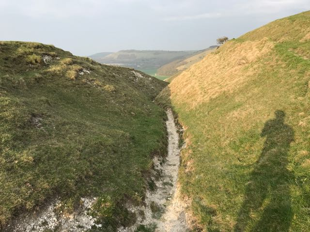 MTB trail in Sussex
