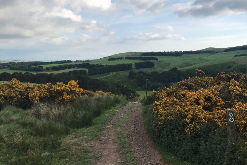 Pentland Hills landscape