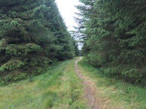 path to Dugles Burn