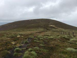 Birkscairn Hill ahead of us