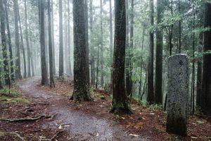 Kumano Kodo trek