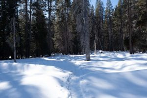 The El Capitan trail in the winter
