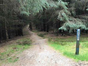 Glentress - black route