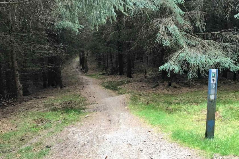 Glentress - black route