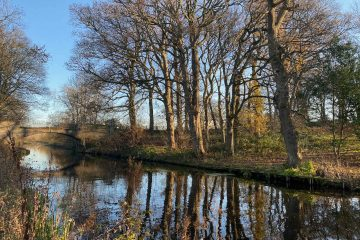 Union Canal in the Autumn